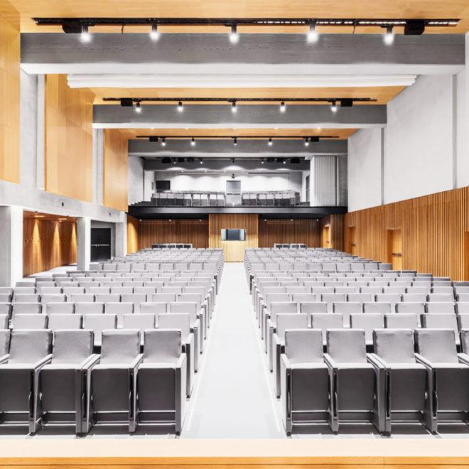 paneles-insonorizantes-de-madera-auditorio-Luiss