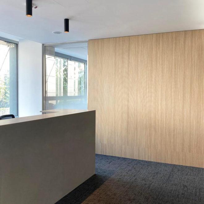 pared-fonoabsorbente-de-madera-paneles-de-listones-hall